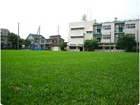 芝小学校(埼玉県川口市)
