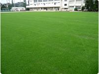 中村小学校(東京都練馬区)